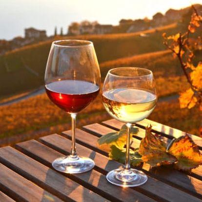 Vinařský pobyt ve Znojmě na 3-7 dní pro dva s polopenzí