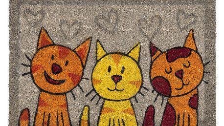 BO-MA Trading Kokosová rohožka kočky šedá, 40 x 60 cm