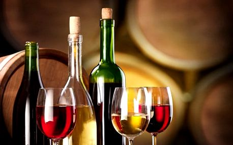 3–4denní pobyt pro 2–4 osoby se snídaněmi a vínem v penzionu Patria Kobylí na Moravě