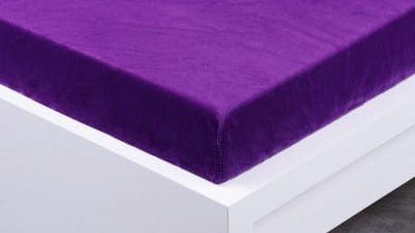 XPOSE ® Prostěradlo mikroflanel Exclusive dvoulůžko - tmavě fialová 200x220 cm