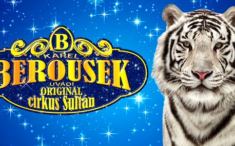 Vstupenky na cirkusovou show pro děti i dospělé