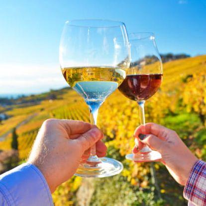 Jižní Morava s neomezeným pivem a vínem