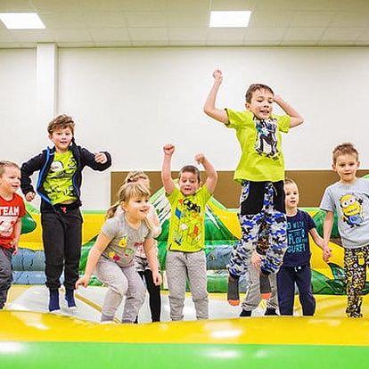 Celodenní vstup do dětského světa Lvíček v Plzni pro 1 dítě