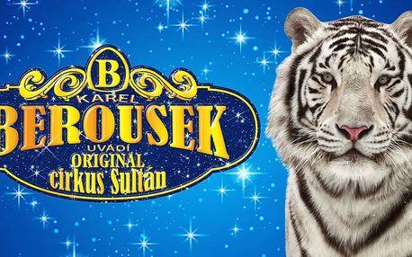 Cirkusová show Karla Berouska: cirkus Sultán