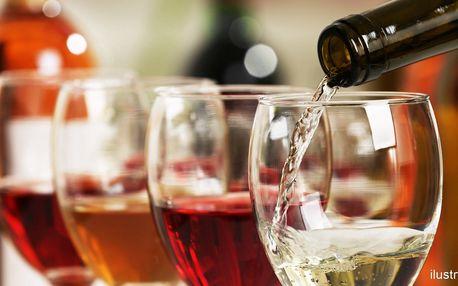 Láhev vína podle výběru, olivy a slané pochutiny