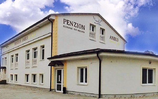 Penzion Aniko Gold