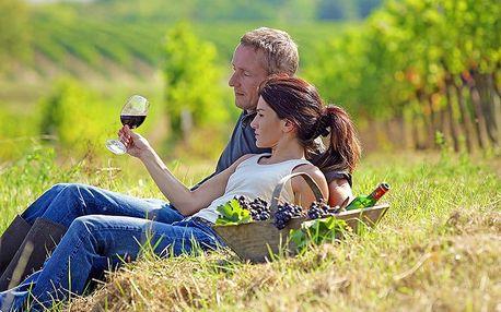 Vinařská Jižní Morava: butikový hotel v Lechovicích u Znojma s neomezenou konzumací vín a polopenzí