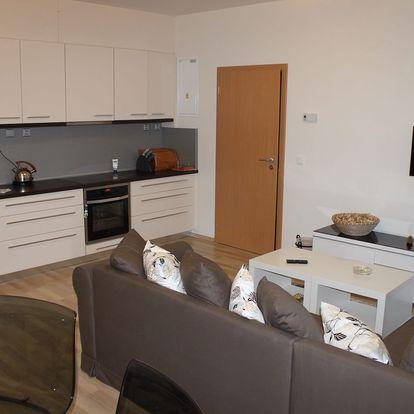 Pronájem apartmánu u Klínovce na 3-4 dny pro dva či rodinu