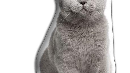 Polštářek Adorable Cushions Britská krátkosrstá kočka