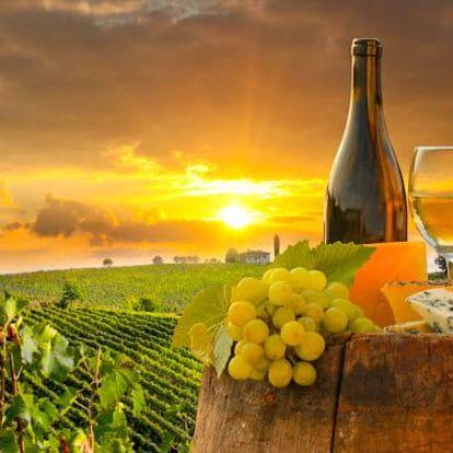 Znojmo: vinařský pobyt s polopenzí