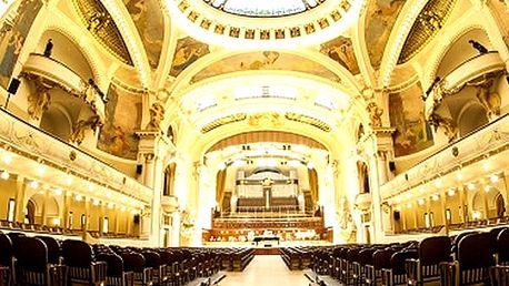 Melodie Mozarta & Vivaldiho - vstupenka pro 1 osobu ve Smetanově síni Obecního domu.
