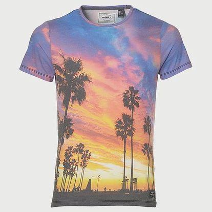 Tričko O´Neill Lm Photo Art T-Shirt Barevná