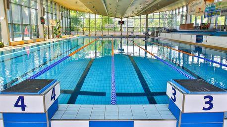 Jeden vstup či permanentka do plaveckého areálu