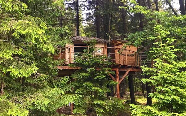 Treehouse Volary Šumava