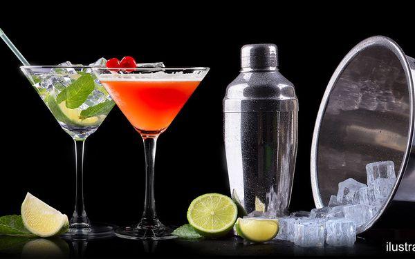 Martini a Tonic pro 1–4 osoby na Malé Straně