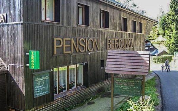 Pension Berounka
