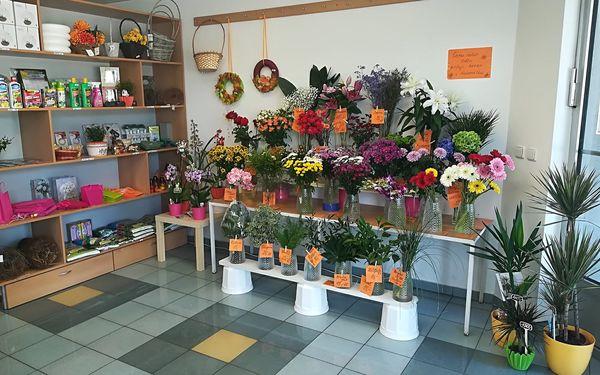 Květiny JS