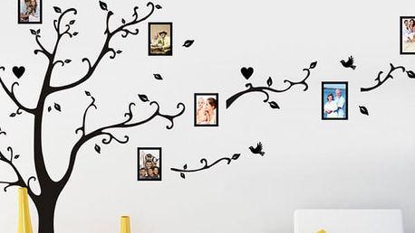 Samolepka na zeď s rámečky strom - 5 barev