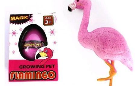 Líhnoucí vajíčko Plameňák