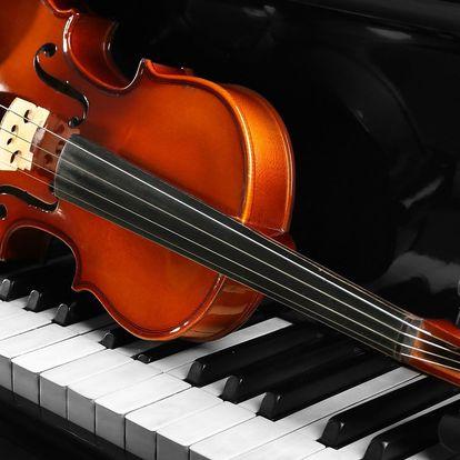 Mozart, Beethoven a Vivaldi ve Smetanově síni
