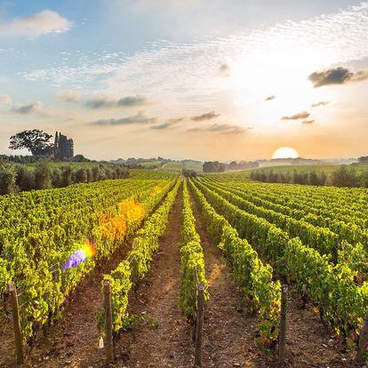 Léto mezi vinicemi: wellness, polopenze a víno
