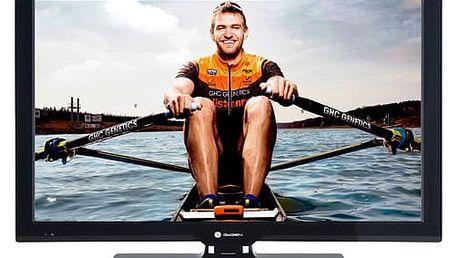 Televize GoGEN TVF 22P266T černá
