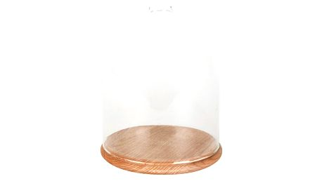 Skleněný poklop s podnosem ComingB Cloche, ⌀15 cm