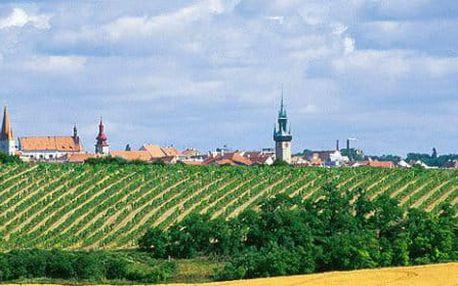 Odpočinková dovolená s polopenzí a lahví vína ve Znojmě