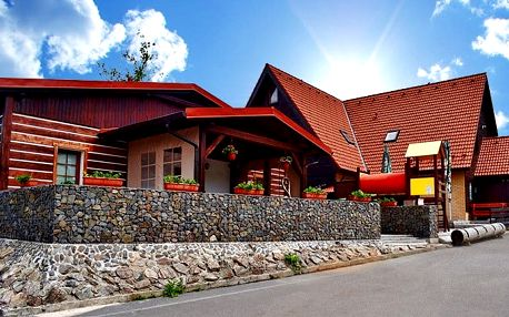 3 nebo 4denní pobyt pro 2 či rodinu v penzionu Chata pod Sjezdovkou v Orlických horách