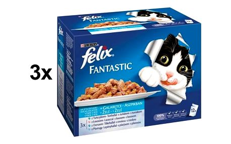 Felix Fantastic výběr z ryb 3 x (12 x 100g)