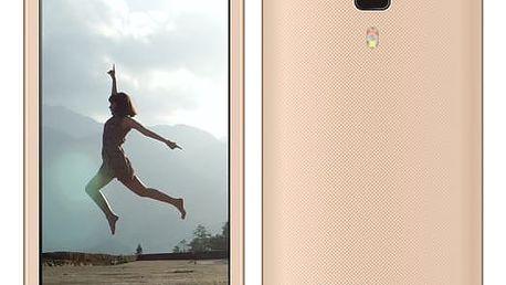 Mobilní telefon Aligator S4080 Dual SIM zlatý (AS4080GD)
