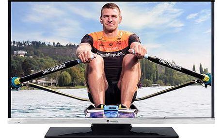 Televize GoGEN TVH 24N484 STDVDC černá