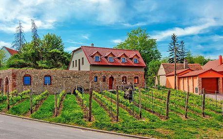 Jižní Morava pro milovníky vín v rodinném vinařství u Znojma včetně degustace s neomezenou konzumací vína + snídaně