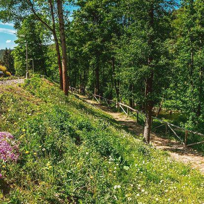 Letní relax v lesích u Varů za last minute ceny