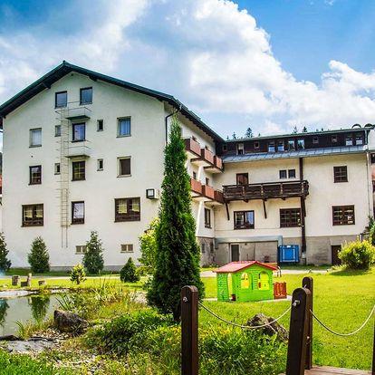 Hotel Lesní dům na Šumavě s polopenzí a saunou