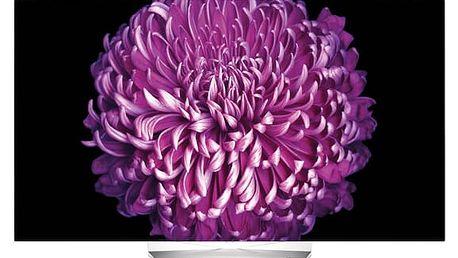Televize LG 55EG9A7V černá/stříbrná