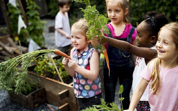 Přírodní aktivity pro děti