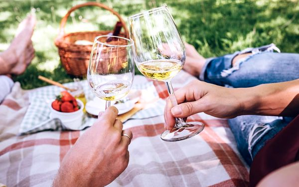 Festival jak víno