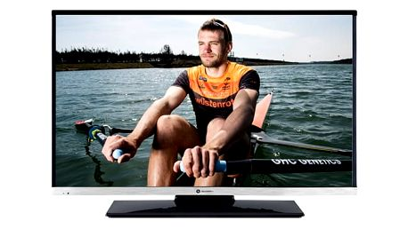 Televize GoGEN TVF 22R384 STWEB černá