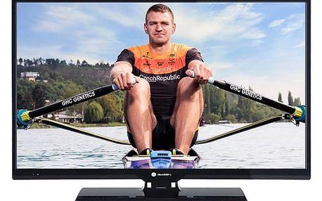 Televize GoGEN TVH 24P266T černá