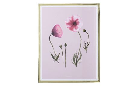 Bloomingville Obraz ve zlatém rámu Poppy, růžová barva, zlatá barva, sklo, kov, papír