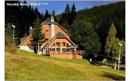 Horský wellness Hotel Vidly: ubytování v srdci Jeseníků