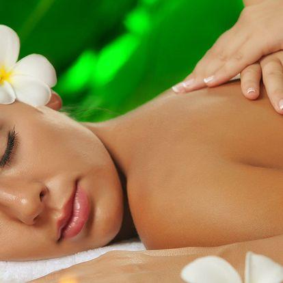 Relax jako na Havaji: hodinová masáž Lomi Lomi