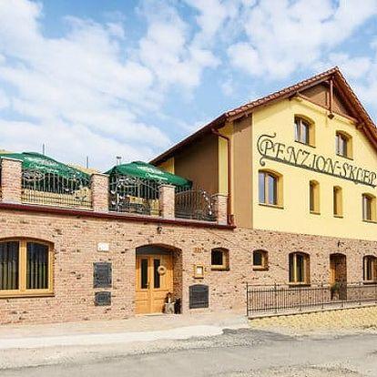 2–6denní vinařský pobyt se snídaněmi a degustací vín pro 2 v penzionu Sklep na Moravě