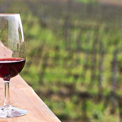 2–3denní vinařský pobyt s degustaci a občerstvením pro 2 ve Vinařství Lintner u Znojma