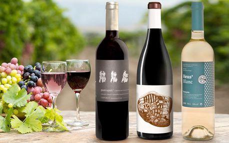 Ceněná španělská vína z rodinné farmy La Vinyeta