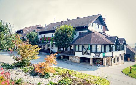 Slovinsko: Penzion Župancicev Hram
