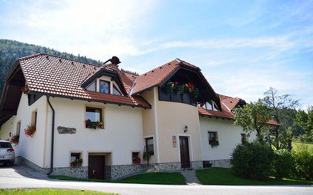 Slovinsko: Eco Tourist Farm Ravnjak