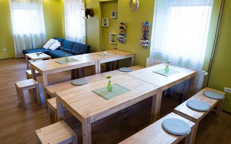 Slovinsko: Hostel Hiša Na Travniku