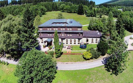 Alpský hotel v těsné blízkosti populárního ski areálu Svatý Petr